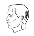 man hairstyle head vector image vector image