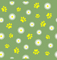summer seamless pattern with pet paw prints vector image
