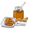 peanut butte jar vector image
