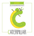 alphabet letter c and caterpillar vector image