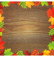 Color Autumn Leafs Frame vector image