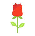 rose flower flat icon valentines day and romantic vector image
