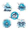 sea fishing trip and sporting club symbol set vector image