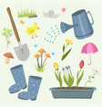 spring natural floral symbols with blossom vector image vector image