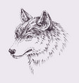 wolf head hand drawn portrait for t-shirt vector image