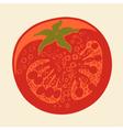 Abstract tomato drawing vector image
