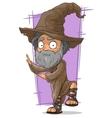 Cartoon old wizard in big hat vector image vector image