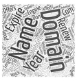 Domain Names and Search Engine Ranking Word Cloud vector image vector image