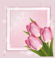 pink tulips on pink background paper frame with vector image