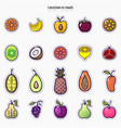 set of colorful fruit icons isolated on a white vector image vector image