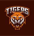 tiger mascot esport logo vector image vector image