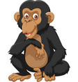 cartoon chimpanzee isolated on white background vector image vector image
