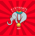 circus elephant badge performance on the ball vector image vector image