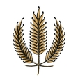 ears of wheat icon vector image vector image
