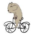 hamster on a bike vector image vector image