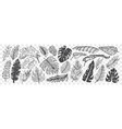 hand drawn leaves doodle set vector image