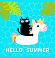 hello summer swimming pool water black cat vector image