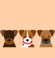 set of little puppy in flat style vector image vector image