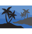 Silhouettes of palm at the night vector image vector image