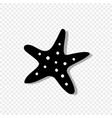 starfish icon isolated on transparent background vector image vector image