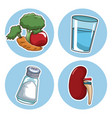 world kidney day icons vector image