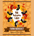 autumn sale banner with fall leaf and berry wreath vector image vector image
