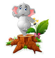 cartoon funny elephant posing on tree stump vector image vector image