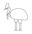 cassowary isolated on white background vector image vector image