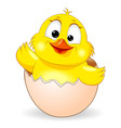 cute chick was born 1 vector image