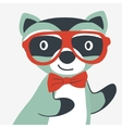 Happy raccoon gentleman vector image vector image