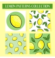 Seamless hand drawn lemon patterns set vector image