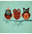 Three cute owls vector image