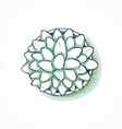 Isolated plants handmade flower in sketch style vector image