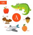 Letter A Cartoon alphabet for children Alligator vector image vector image