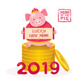 pig cartoon holding sign on coins chinese new vector image