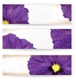 Set of banners with purple flowers and dots vector image vector image