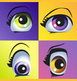 beautiful colored eyes vector image