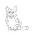 Dog sitting lines