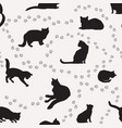 cat seamless pattern pets background kitten vector image vector image