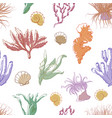 corals and seaweed pattern vector image