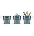 beer bottles in metal bar ice bucket for cool vector image