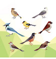 bird animals low poly logo icon symbol set vector image