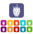 blackberry fruit icons set flat vector image vector image