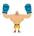 Boxer winner Athlete in blue gloves Bodybuilder vector image vector image