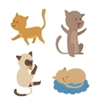 Cartoon cat character vector image vector image