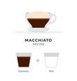 macchiato coffee recipe flat isolated vector image vector image