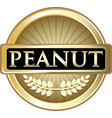 peanut gold icon vector image vector image