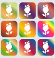 rose icon sign Nine buttons with bright gradients vector image vector image