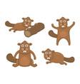 set beavers vector image
