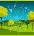 spider web with dew and meadow on background vector image